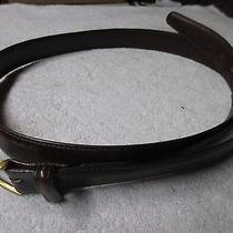 Men's Leather Belt Photo