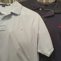Men's Ralph Lauren Polo Photo