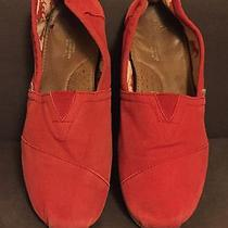 Men's Red Canvas Toms Size 11 Photo