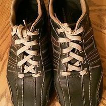 Men's Skecher's Sport Shoes Photo
