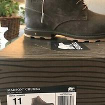 Men's Sorell Boots - Size 11 - Brand New Photo