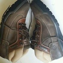Mens Timberland Mens Boot Brown. Size 11m Photo