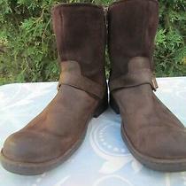 Men's Ugg 13 Brown Boots Photo