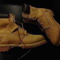 Men's Wheat Timberland Boots Size 10 New in Box Photo