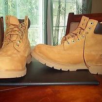 Men Timberland 6-Inch Basic Waterproof Boot (18094) Wheat New Display Model 13w Photo