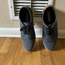 Mens 11 Steve Madden Shoes Photo