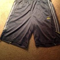 Mens Adidas Shorts Medium Photo