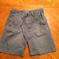 Mens American Eagle  Shorts 30 Photo