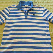 Mens Blue Stripe Lacoste Cotton Polo Short Seeve Shirt Sz 6  Large Photo
