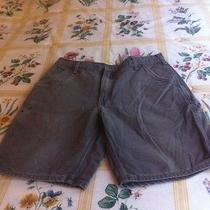 Mens Carhartt Carpenter Shorts Size 36 Work Outdoor Gray (L92) Photo