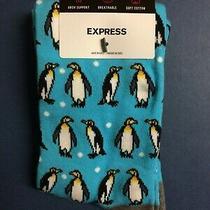 Mens Express Dress Socks Turquoise Penguins Shoe Size 8-13 New Nwt Photo