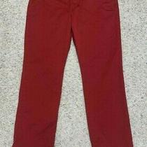 Mens Express Photographer Pants 31x30 Red Photo