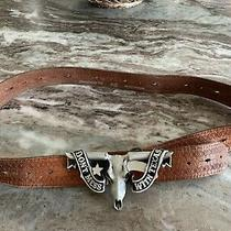 Mens Fossil Leather Belt With Numbered Solid Pewter Buckle Size 40/100 Photo