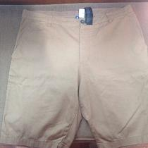 Mens h&m Shorts Photo
