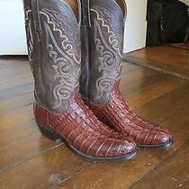 Mens Lucchese Cowboy Boots Caiman (Croc) Tail Exotics Handmade Like New 9d Photo