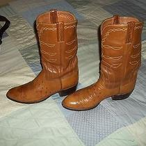 Mens Lucchese Ostrich Leather Boots 6380s Tx 10e 81102 Photo