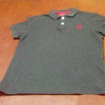 Mens Medium Express Polo Photo
