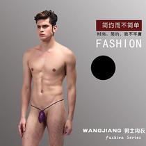 Mens Sexy Pouch Mesh Bag G-String Thong Underwear T Back Brief Bikini 6 Colors Photo