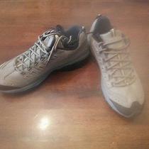 Mens Skechers New in Box..  Size 11.5 Photo