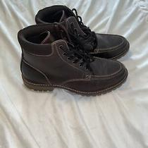 Mens Steve Madden Boots  Photo