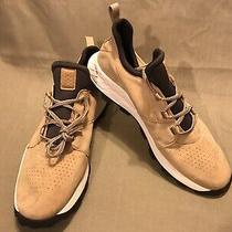 Mens Timberland Brooklyn Oxford Beige Perforated Sneakers A1ywn Size 13 Photo