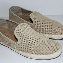 Mens Toms Freetown Sabados Perforated Suede Slip on Shoes Sand Sz 10.5 Beige Euc Photo