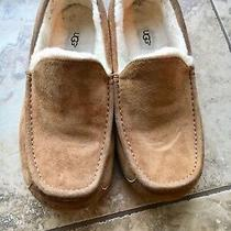 Mens Ugg Ascot Slipper Loafer Moccasins  10 Photo