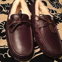 Mens Ugg Slippers 11 Photo
