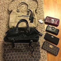Michael Kors Coach Handbags Photo