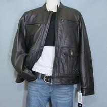 Michael Kors Man's Genuine Leather Insulated Jacket. Size M. New Wt (595 Orig.) Photo