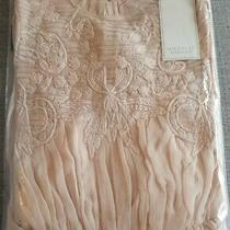 Michelle Keegan Blush Long Sleeve Dress Size 8 - Brand New With Tags  Photo