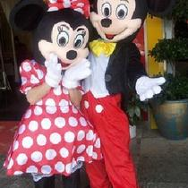 Mickey & Minnie Mouse Couple Mascot Costume 2pcs Adult Disney Fancy Outfit Dress Photo