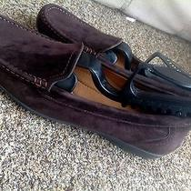 Minnetonka Moccasinswomens Size 8chocolate Brown Suede Gently Worn Photo