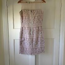 Mint Velvet Blush Lace Dress Nude Pink Uk 10 Cotton Lace Tiered Photo