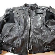 Mint X Element Thick Leather Motorcycle Gear Jacket 3xl Xxxl  Photo