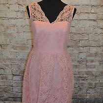 Modcloth Layer on the Love Dress in Blush Nwt Sz 12 149lace Scallop Sweetheart Photo