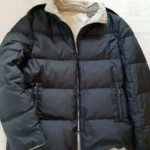 Moncler Brown Tag Down Jacket Black Size L Dhl Fedex F/s Photo