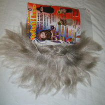 Morris Costumes 8 Inch Grey/gray Beard & Mustache Biblical Hobo Duck Dynasty Nip Photo