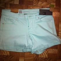 Mossimo Aqua Blue Shorts Size 4 Nwt  Photo
