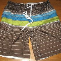 Mossimo Mens Swim Shorts Trunks Brown Blue Stripe Size X Large Excellent Photo