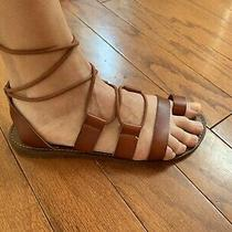 Mossimo Womens Gladiator Sandal Lilac Brown Size 8 Lace Up Strappy Ankle Tie Photo
