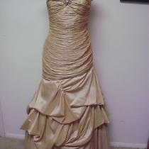 Mother of the  Bride Dress Style Dakota Champagne Taffeta Size 14 799 Photo