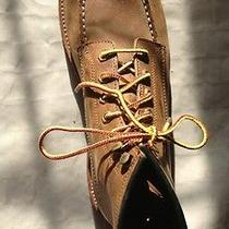 Mrn's Frye Dakota Lace Up Gently Worn Photo