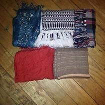 Multipack Selection of 5 Beautiful Scarves Photo