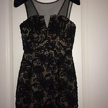 Must See Beautiful Brand New Bcbg Dress Photo