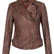 Muubaa Monteria Slim Wired Burnet Brown Leather Fitted Biker Jacket Size 12 New Photo