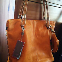 Mystique and Steve Madden Totes (2 Tote Lot) Photo