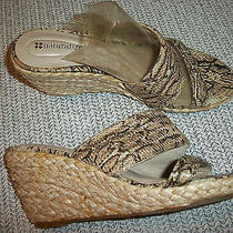 Naturalizer Wedge Heel Slide Shoe Size 6 Medium Animal Print Design Manmade Photo