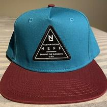 Neff Custom Goods Braving the Elements Usa Mens Teal Snapback Hat One Size Photo