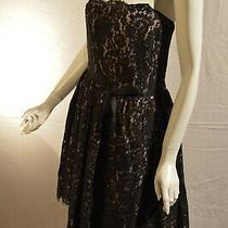 Neiman Marcus by Robert Rodriguez Cream and Black Lace Dress Size 14 -New W/tag Photo